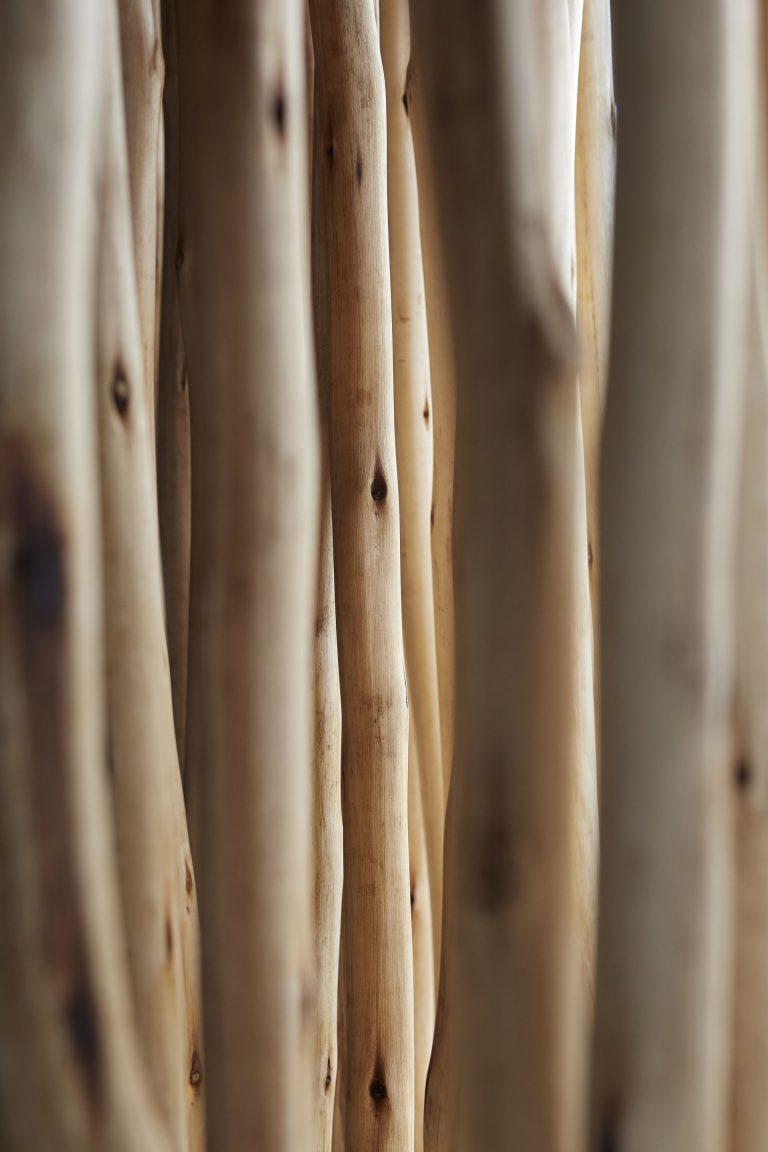 φυσικοί κορμοί shading sticks